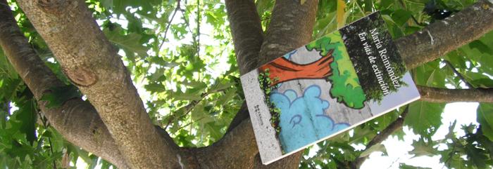 Unha novela escrita como as vetas das árbores, que dun xeito innovador nos deixan percorrer das pólas ás raíces.